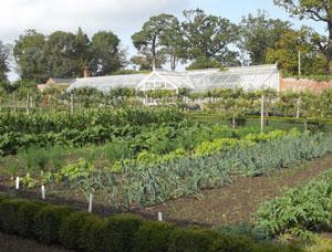 Raveningham Gardens